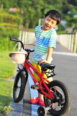 Royalbaby Kids Bikes